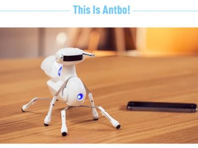 子供向けプログラミングができるおもちゃ~昆虫ロボットAntbo~