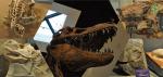 恐竜王国中里